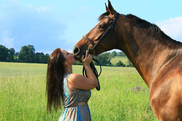 Photograph - Melissa-millie33 by Life With Horses