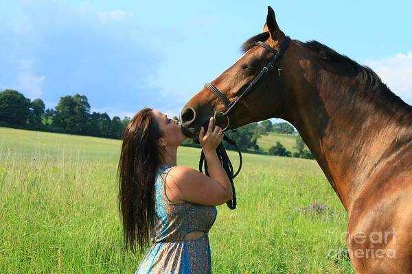 Photograph - Melissa-millie34 by Life With Horses