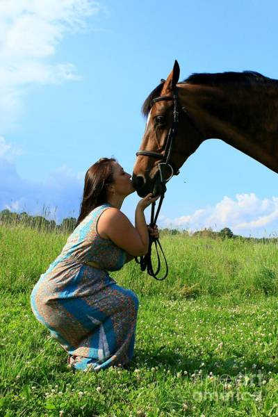 Photograph - Melissa-millie41 by Life With Horses