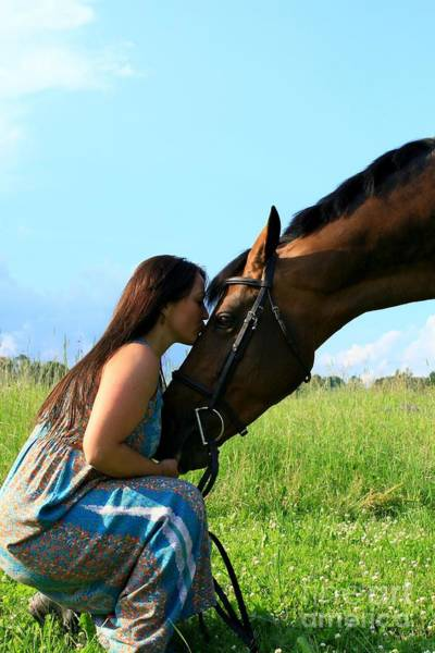 Photograph - Melissa-millie44 by Life With Horses