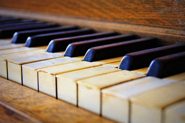 Player Piano Photograph - Melodies And Memories by Cricket Hackmann