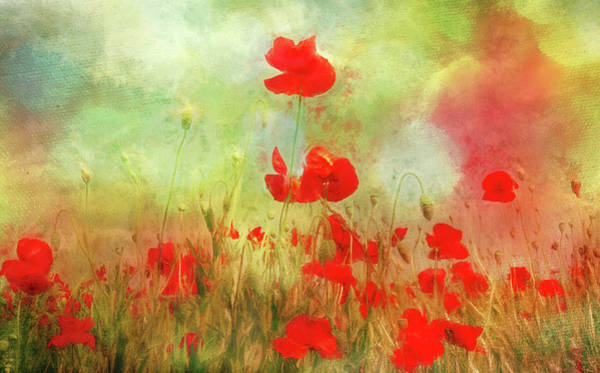 Digital Art - Melody Of Summer by Annie Snel