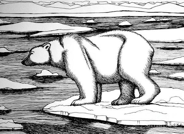 Polar Bear Drawing - Melting Away by Nick Gustafson