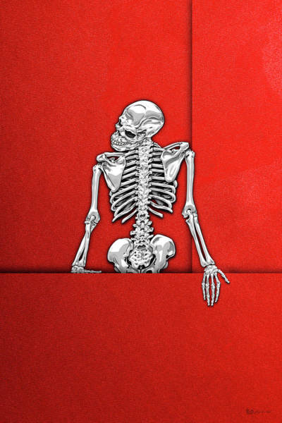Digital Art - Memento Mori - Silver Human Skeleton On Red Canvas by Serge Averbukh