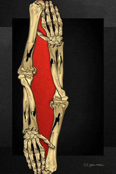 Digital Art - Memento Mori - Two Sets Of Gold Human Arm Bones Over Black And Red Canvas by Serge Averbukh