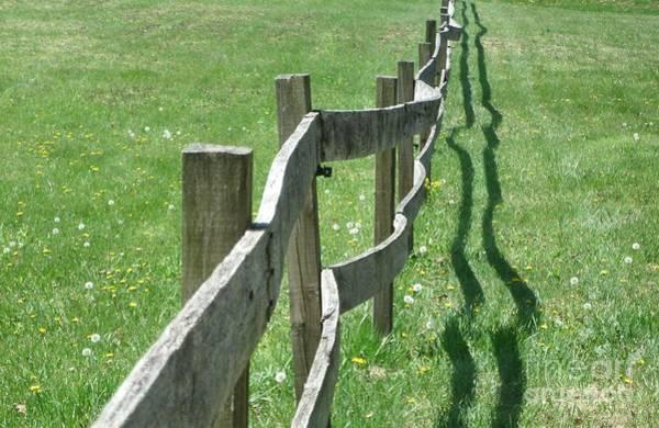 Photograph - Mending Fences by Tammie J Jordan