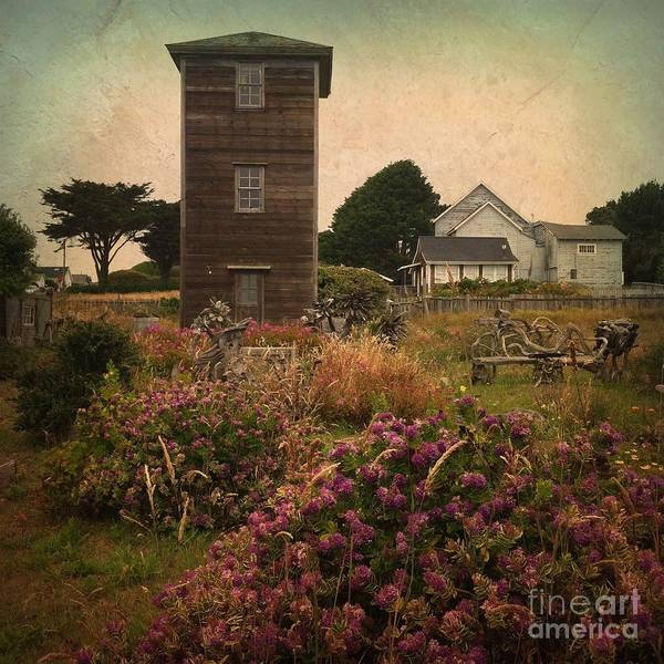 Photograph - Mendocino  by Charlene Mitchell