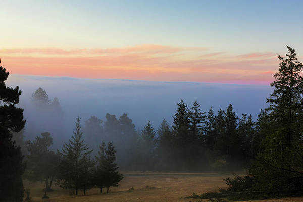 Wall Art - Photograph - Mendocino Fog by Kathleen Bishop