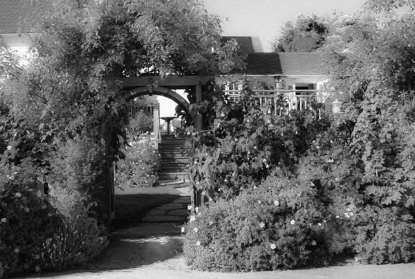Photograph - Mendocino Gate Bw by Bonnie Follett