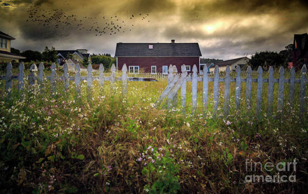 Photograph - Mendocino Red Barn by Craig J Satterlee