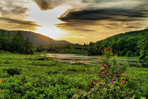 Photograph - Meredith Pond Sunset by Betty Pauwels
