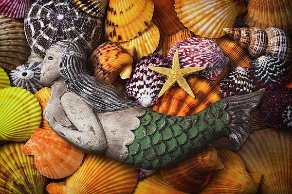 Wall Art - Photograph - Mermaid With Starfish by Garry Gay