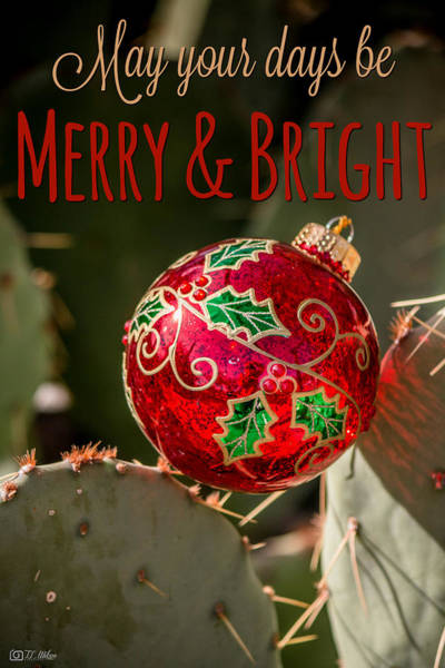 Photograph - Merry And Bright by Teresa Wilson
