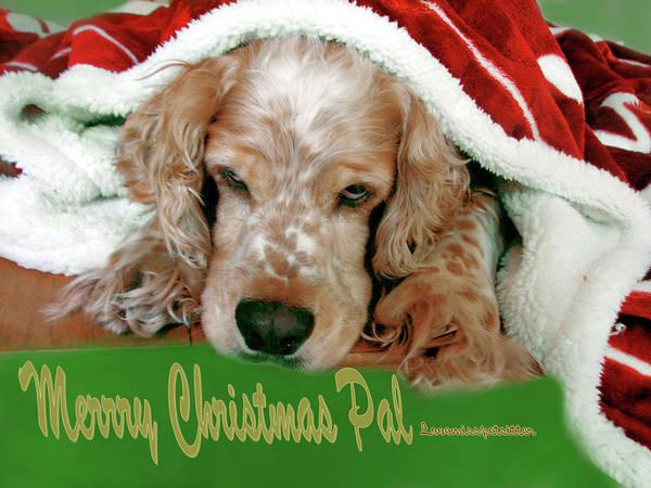 Digital Art - Merry Christmas Art 35 by Miss Pet Sitter