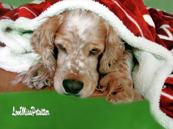 Digital Art - Merry Christmas Art 36 by Miss Pet Sitter