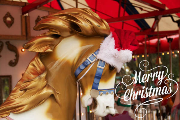 Photograph - Merry Christmas Carousel Horse by Alice Gipson