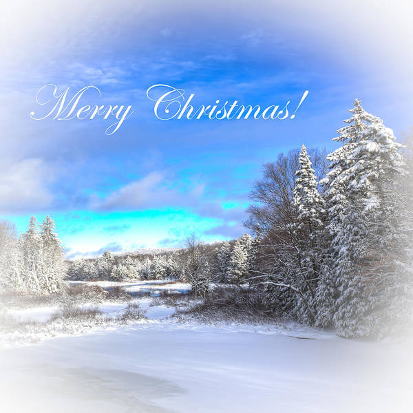 Photograph - Merry Christmas by David Patterson