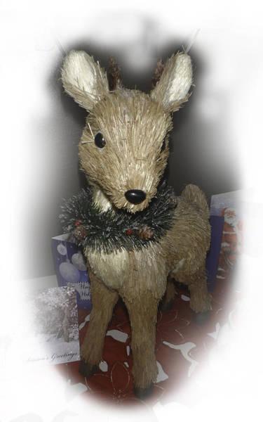 Photograph - Merry Christmas Deer by Judy Hall-Folde