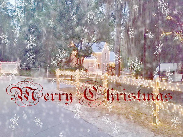 Photograph - Merry Christmas by Judy Hall-Folde