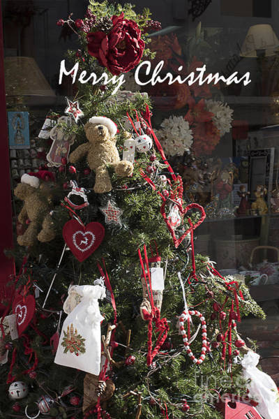 Photograph - Merry Christmas Teddy Tree by Brenda Kean