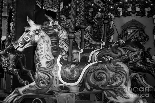 Merry Go Round Photograph - Merry Go Round by Paul Quinn