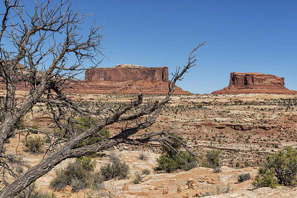 Photograph - Mesas Near Moab by Belinda Greb