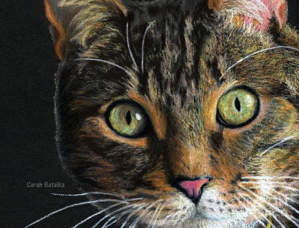 Colored Pencil Drawings Painting - Mesmer Eyes Detail  by Sarah Batalka