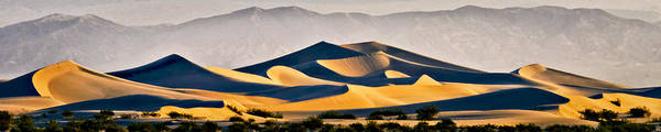 Photograph - Mesquite Dunes by Albert Seger