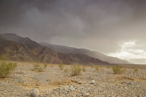 Death Valley Np Photograph - Mesquite Dunes Thunderstorm by Kunal Mehra