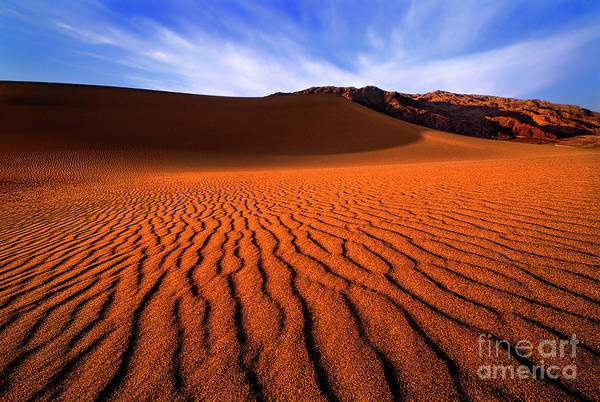 Photograph - Mesquite Sand Dune Patterns Death Valley California by Dave Welling