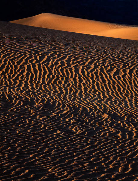 Death Valley Np Photograph - Mesquite Sand Dunes Death Valley Np California by Robert Dayton