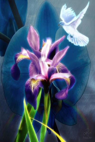 Digital Art - Message Of Peace by Pennie McCracken