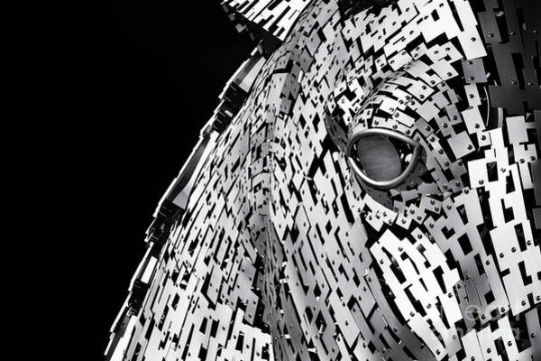 Wall Art - Photograph - Metal Horse Abstract by Tim Gainey