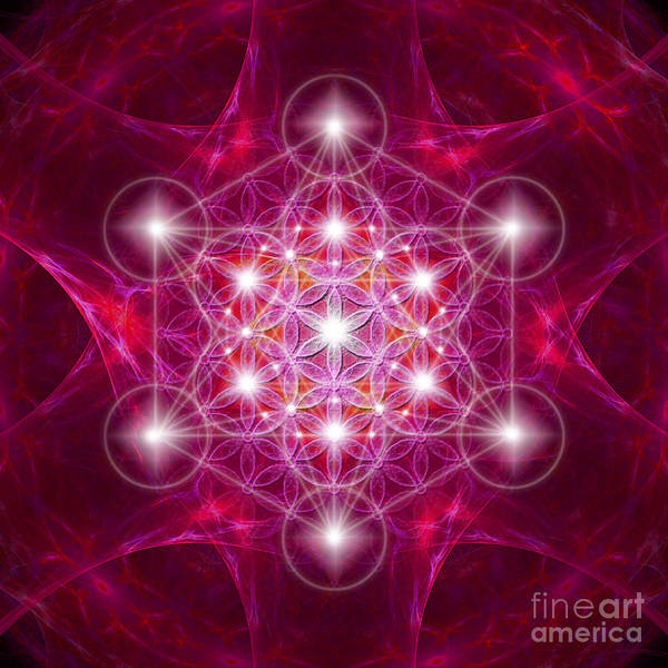 Digital Art - Metatron Cube With Flower by Alexa Szlavics