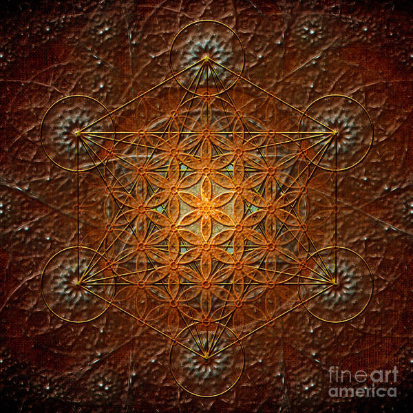 Digital Art - Metatron's Cube Inflower Of Life by Alexa Szlavics