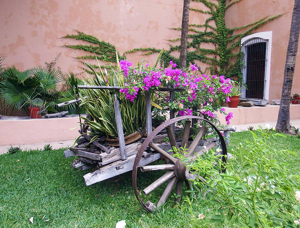 Photograph - Mexican Flower Cart by Kurt Van Wagner