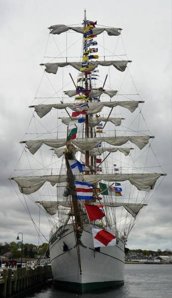 Mexican Navy Ship Art Print