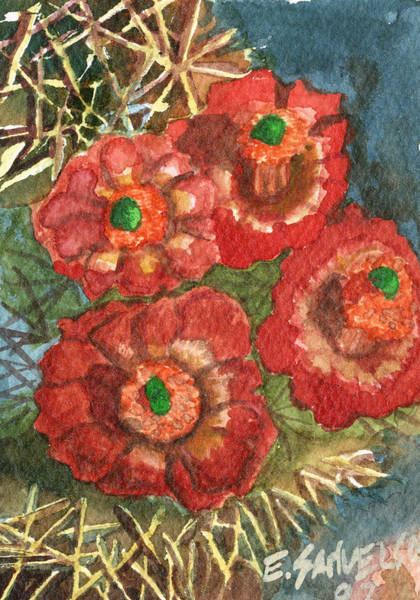 Painting - Mexican Pincushion by Eric Samuelson