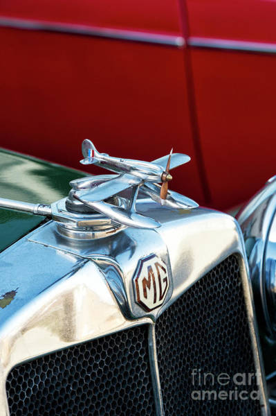 Photograph - Mg Airplane Hood Ornament  by Tim Gainey