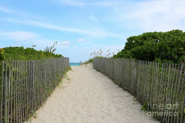 Photograph - Miami Beach Path With Fence by Carol Groenen