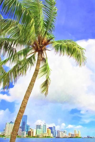 Photograph - Miami Through The Palm by Alice Gipson