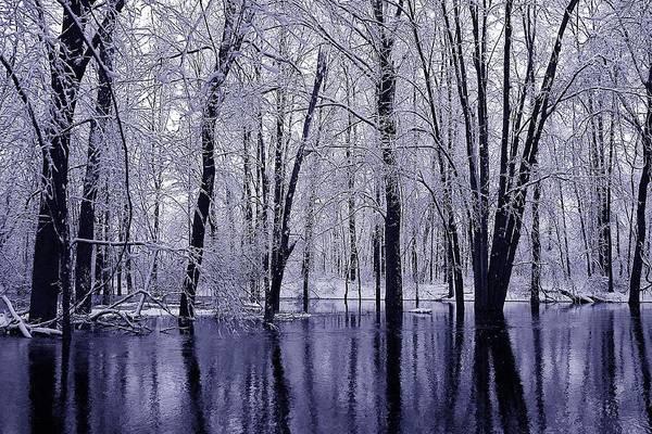 Photograph - Michigan Winter 11 by Scott Hovind