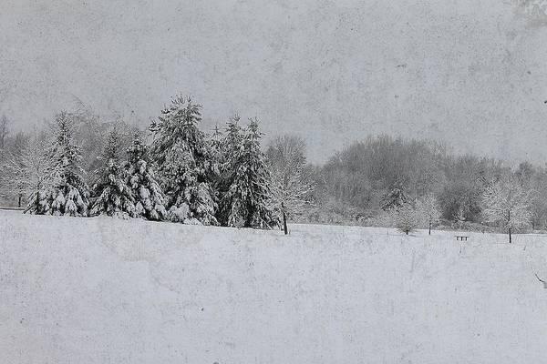 Photograph - Michigan Winter 16 by Scott Hovind