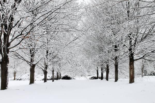 Photograph - Michigan Winter 3 by Scott Hovind