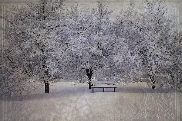 Photograph - Michigan Winter 4 by Scott Hovind