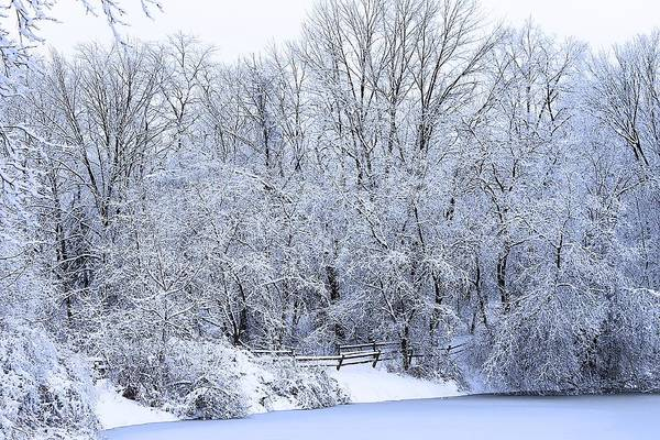 Photograph - Michigan Winter 5 by Scott Hovind