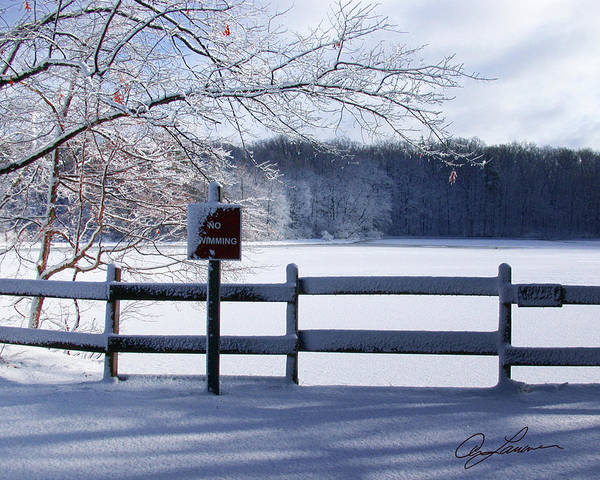 Photograph - Michigan Winters by Ann Lauwers