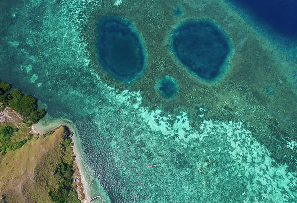 Photograph - Mickey Mouse Beach Of Flores Island by Pradeep Raja PRINTS