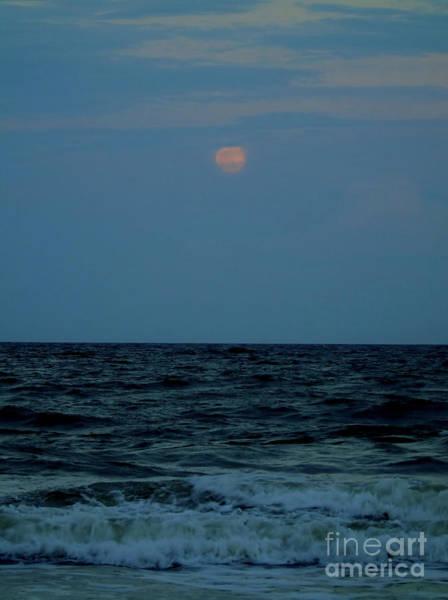 Photograph - Micro Moon April 2016 by D Hackett