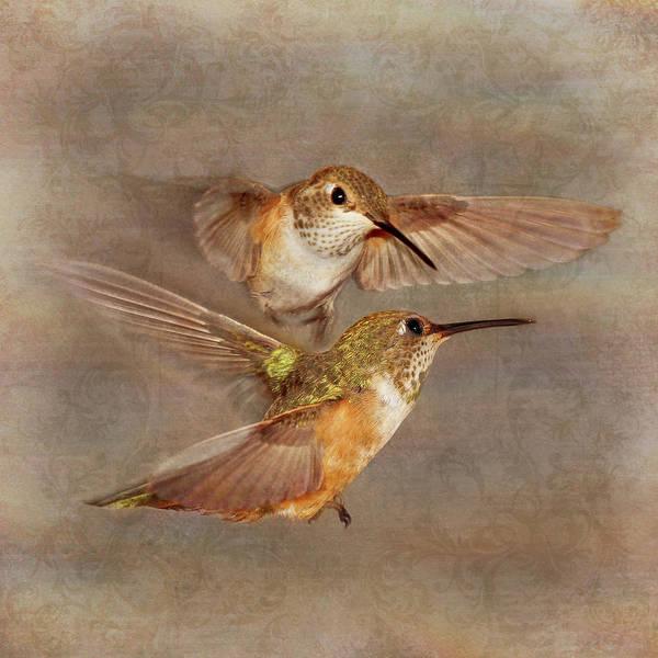 Photograph - Mid-flight I by Leda Robertson